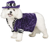 Pimp Doggy Costume
